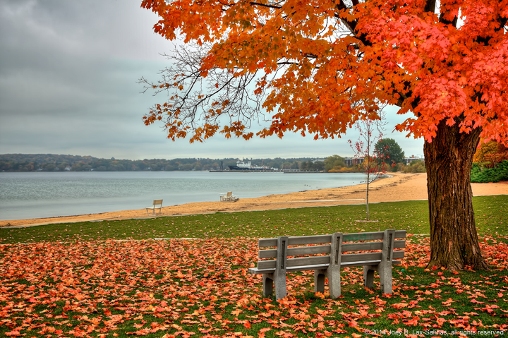 Traverse City Fall Photos